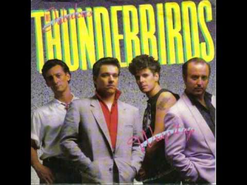 The Fabulous Thunderbirds Born To Love You