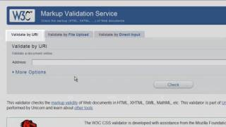 Using The W3C Validator