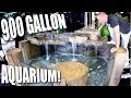 900 GALLON TURTLE AQUARIUM SETUP with KING OF DIY FOR REPTILE ZOO!!   BRIAN BARCZYK