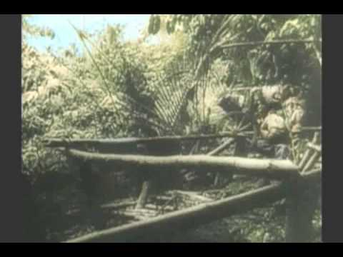 WWII  GUADALCANAL 2 of 3 RARE COLOR FILM