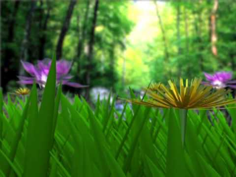 Animated Jungel Flowers  - Motion graphic Animated Background - free video download