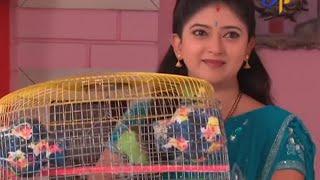 Savithri 30-06-2015   E tv Savithri 30-06-2015   Etv Telugu Serial Savithri 30-June-2015 Episode