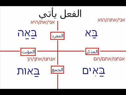 Hebrew with Dawoud lesson 19