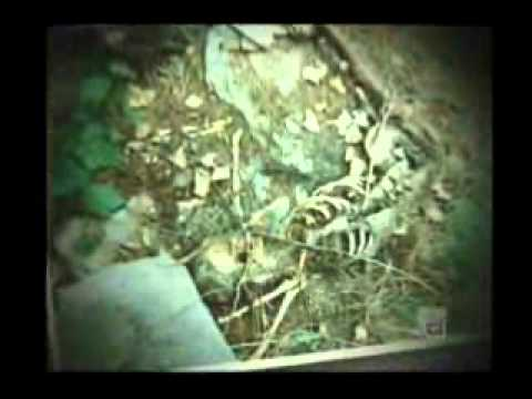 Arthur Shawcross - [Part 1] - Serial Killer - Documentary