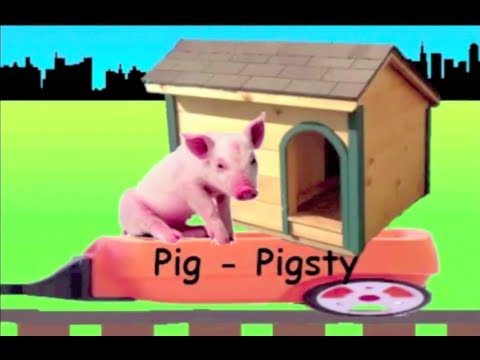 Learn Animals and their Houses Train - learning animal homes for kids