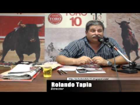 TORO TENDIDO 10 (19.01.15)