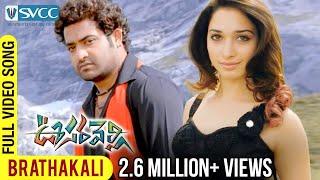 Brathakali Video Song - Oosaravelli