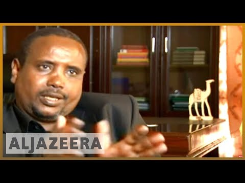 New fighting force in Ethiopia's Ogaden