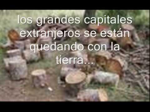 ANTIGUO DUEÑO DE LAS FLECHAS - EL IMPENETRABLE