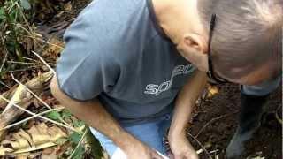 Agricultura Específica por Sitio - Plátano - Valle del Cauca