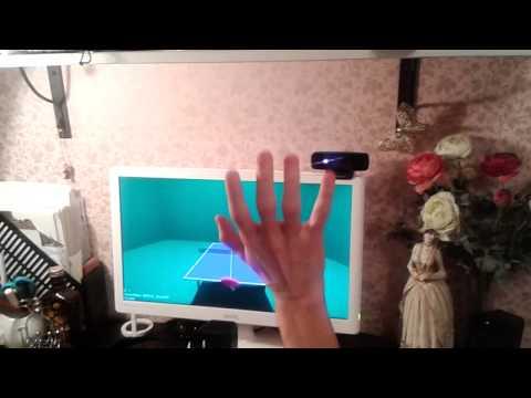 Perceptual Table Tennis