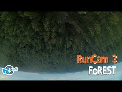 Run... in a forest - Some practice FPV - UCv2D074JIyQEXdjK17SmREQ