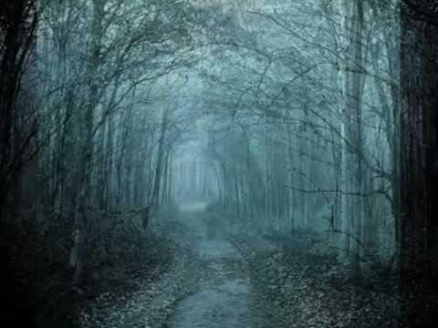 Apocalyptica - Farewell -3eBroYj_Qv0