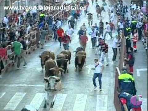 Grandes carreras en el encierro de Guadalajara 2011