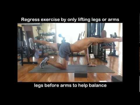 Lower Back Exercises and Stretches - Exercises for Lower Back Pain Part 2/5