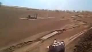 How Bedouins Have Fun