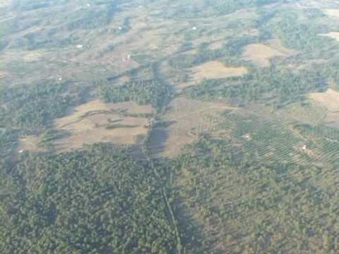 Deforestación región Purépecha, Michoacán