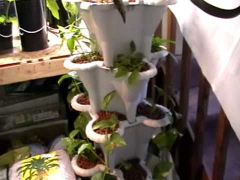Vertical Hydroponic System Update