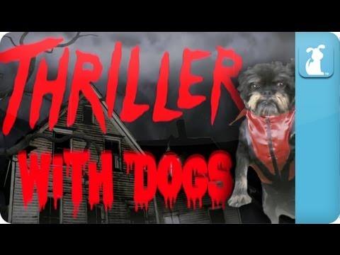Thriller...With Dogs - Petody - UCPIvT-zcQl2H0vabdXJGcpg