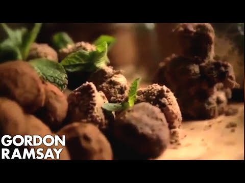 Mint Chocolate Truffles part 2 - recipe - Gordon Ramsay