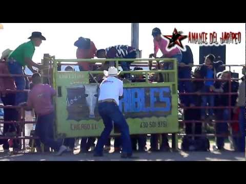 !!!RANCHO LOS TERRIBLES EN WISCONSIN!!! Joel de Chaucingo vs El Terrible