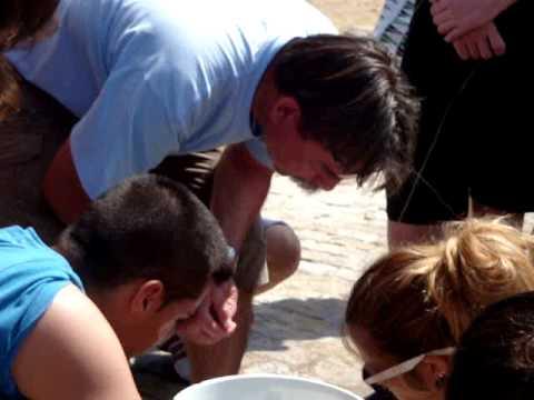 Salida de campo Zoología y Botánica marinas 2011 - Video 3