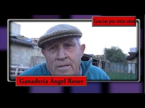 Se despide la Ganadería de Don Ángel Roser de Godelleta