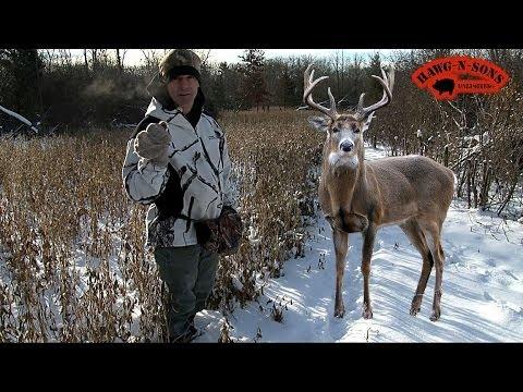 Hunting Whitetail Deer  - BEANS & CORN to Kill BIG Winter Bucks December