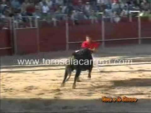 Concurso de Recortes San Martín de la Vega 2005