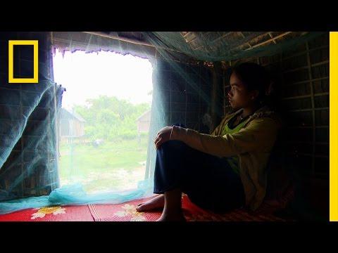 Cambodian Love Huts