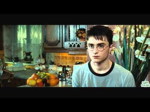 Harry Potter und der Orden des Penners Teil 1