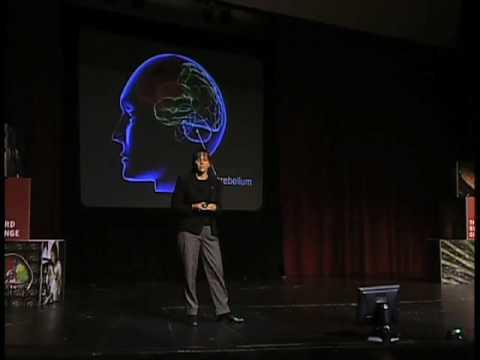 Building a Circuit-Diagram for the Brain (Jennifer Raymond, Stanford University)