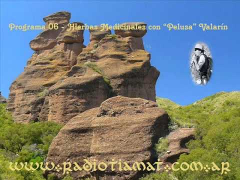 """Programa 06 - Parte1/5 - Hierbas medicinales con Raul """"Pelusa"""" Valarín"""