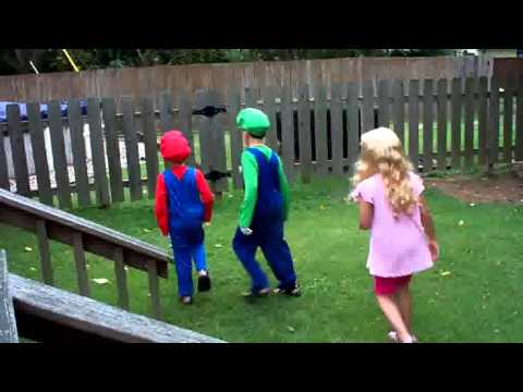 Mario And Luigi Save Princess Peach