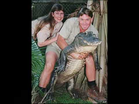 Best Of Steve Irwin