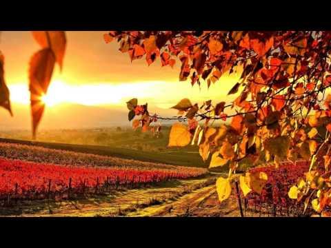 Melodic Progressive House mix Vol 6 (Autumn Colors) (rework) - UC7C635qzGz3CGwTJO-7AlhA