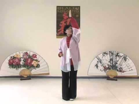 Daoyin Yang Sheng Gong 12 Method - Health Qigong
