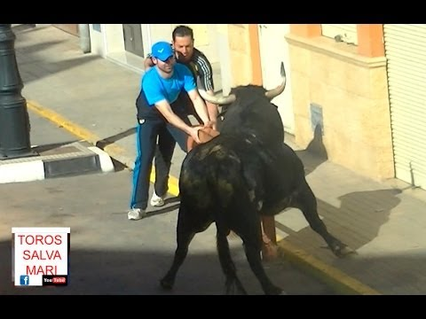 Quartell Toros 2014, toro Cerril soltado a primeros de Abril