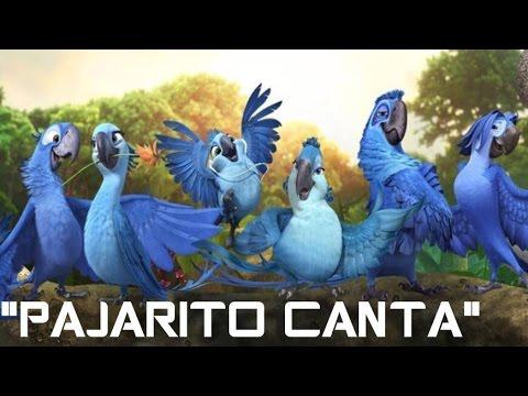 PAJARITO CANTA PAJARITO CANTA VERSION RIO { LA PELICULA }