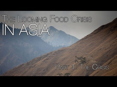 The Looming Food Crisis in Asia : The Crisis