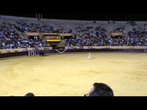 Gran Concurso de Recortadores Mostoles -Final  2/2
