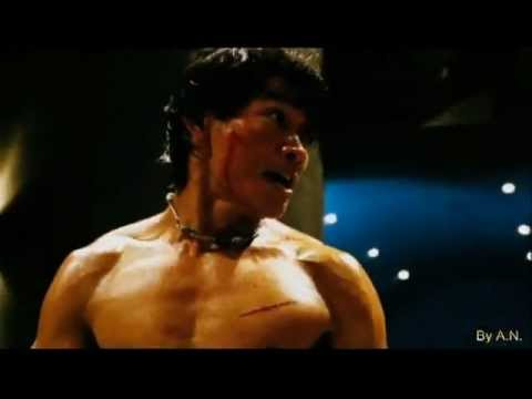 TONY JAA 2 The Protector