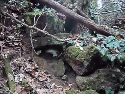 I reperti archeologici del bosco di Montefogliano (Vetralla) - Parte II