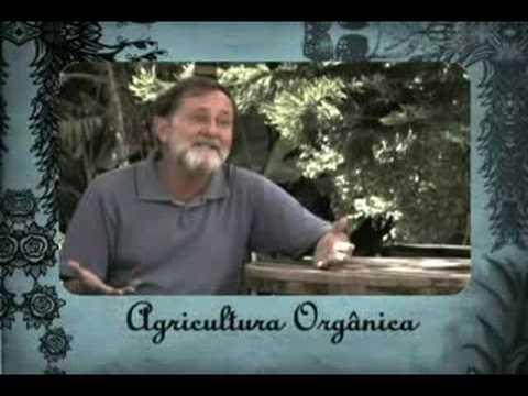 Sebrae - Agricultura Orgânica