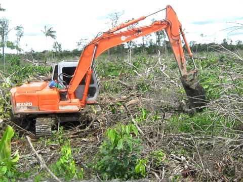 Destrucción de suelo de Catival post-talarasa.