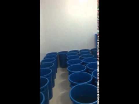 فيديو: الهيئة بالسعودية تضبط أكبر مصنع للخمور في حائل