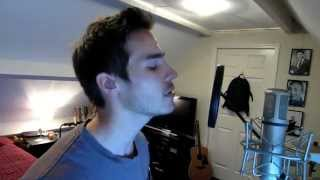 One Republic - Counting Stars(cover)