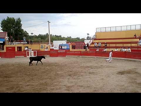 Concurso de recortadores El Burgo de Ebro (Zaragoza) 16/07/2011- Pedro Hurtado y Jesus Picazo.