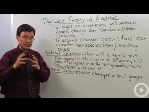 Darwins Theory of Evolution -6osEUs9iHcU