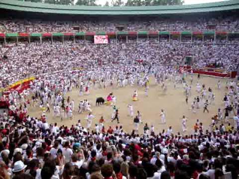 Llegada plaza toros tercer encierro toro rezagado 9 Julio 2010